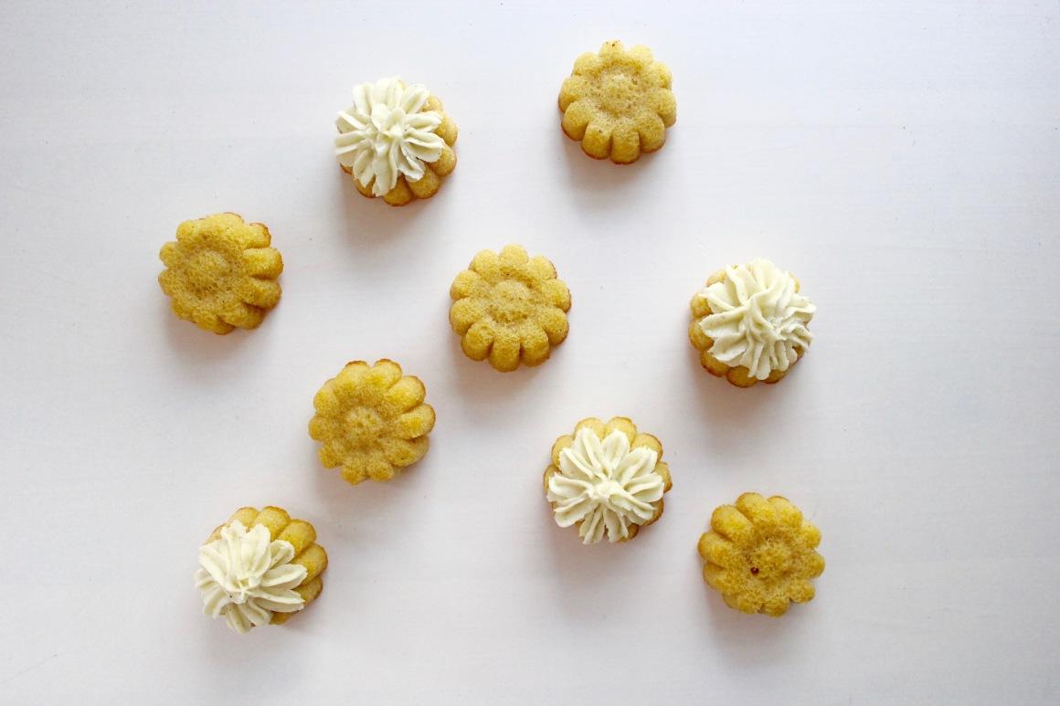 Iced daisies.jpg